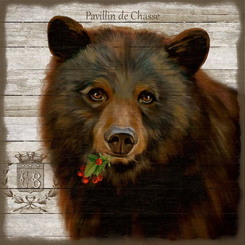 French Lodge Bear, Red Horse Signs, vintage art, artist Suzanne Nicoll, magnificent European brown bear on rustic white background, distressed wood panel with knots and  natural characteristics