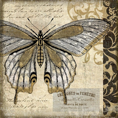 Butterfly II, Red Horse Signs, vintage art, artist Suzanne Nicoll, striking butterfly in tan and black and white on distressed wood panel with occasional knots and natural characteristics, panels are made from tongue and groove slats of hemlock, fir, or alder, Made in America