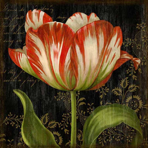 Dutch Tulip 1, Red Horse signs, vintage art, artist Suzanne Nicoll, a striking image of a red and white Dutch tulip in full bloom on a black background, wood panels are made from tongue and groove slats of hemlock, fir and alder
