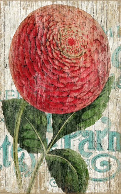 Zinnia Red, Red Horse signs, vintage art, artist Suzanne Nicoll, striking image of a giant red zinnia flower set off against a cream-white background with blue lettering, distressed wood panels have knots and other natural imperfections