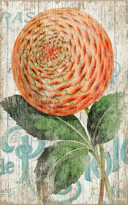 Zinnia Orange, Red Horse signs, vintage art, artist Suzanne Nicoll, striking image of a giant orange zinnia flower set off against a cream-white background with blue lettering, distressed wood panels have knots and other natural imperfections