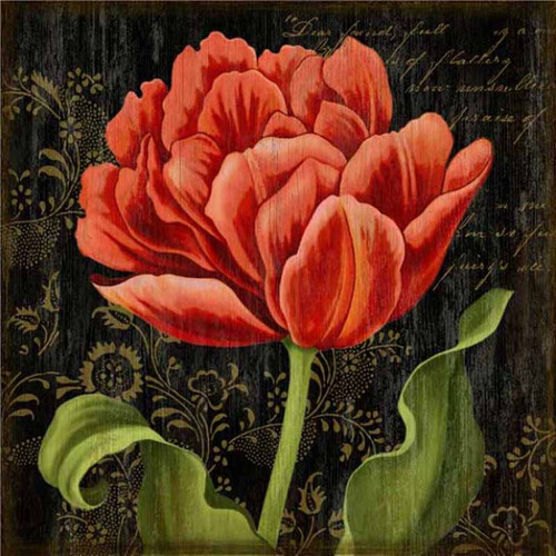 Dutch Tulip 2, Red Horse signs, vintage art, artist Suzanne Nicoll, a striking image of a deep red Dutch tulip in full bloom on a black background, wood panels are made from tongue and groove slats of hemlock, fir and alder