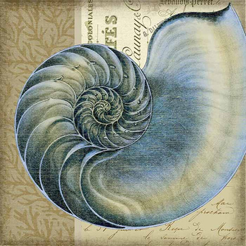 Indigo 1 Nautilus, Red Horse Signs, wall art, artist Suzanne Nicoll, image of exotic sea shell in indigo blue, printed on wood, Made in America