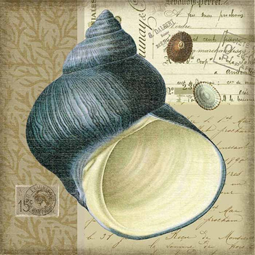 Indigo 2 Wide Spiral Shell, Red Horse Signs, wall art,  artist Suzanne Nicoll, image of exotic sea shell in indigo blue, printed on wood, Made in America