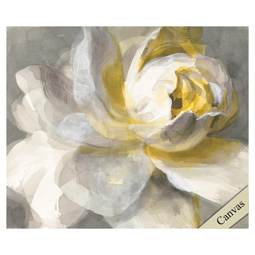 Abstract Rose, Propac Images, canvas art, large single white rose with splashes of yellow and gray