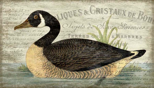 French Goose, Red Horse Signs, vintage art on distressed wood, artist Suzanne Nicoll, profile image of Canadian Goose floating on a lake