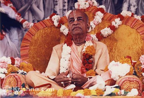 "Srila Prabhupada Photo, Golden Vyasasana, 8""x10"""