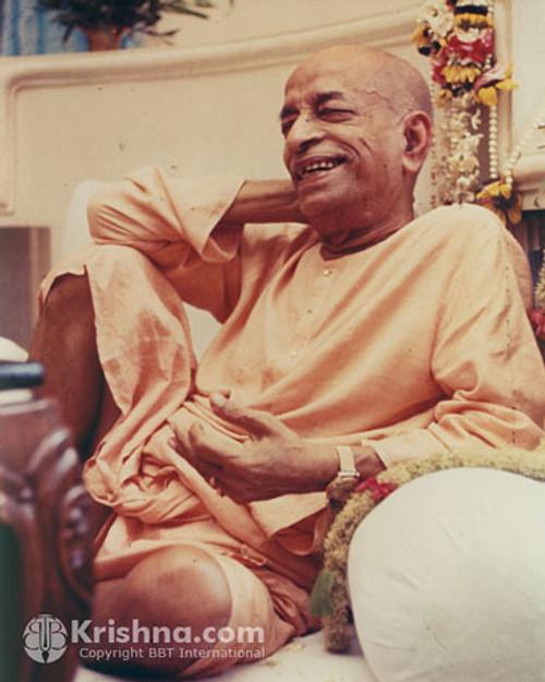 "Srila Prabhupada Photo, Relaxing in Vrindavana, 8""x10"""