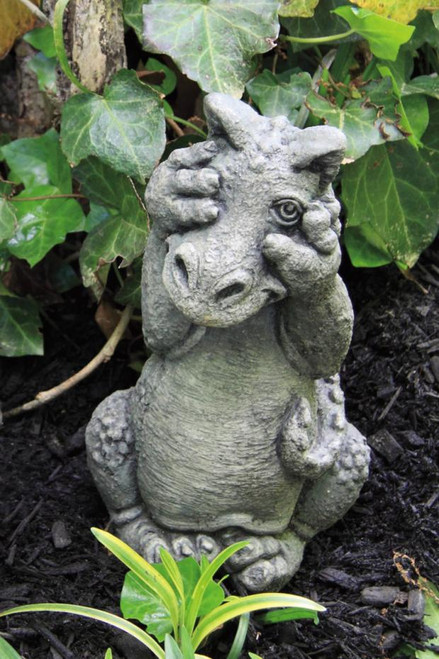 Little Dragon Peek A Boo