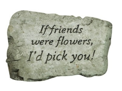 Stone, If Friends were Flowers I'd Pick You