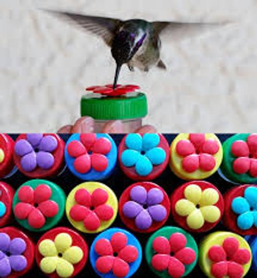 Hummingbird Nectar Dot
