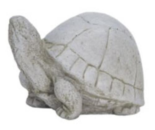 Box Turtle Stone