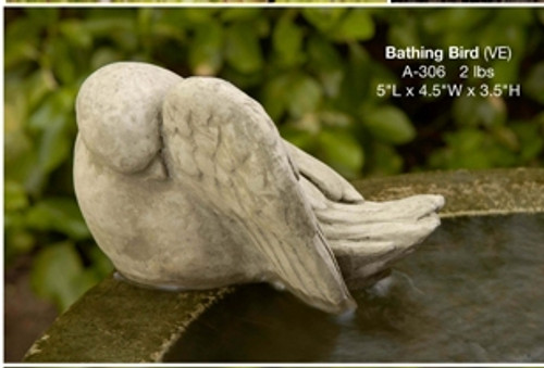Bathing Bird