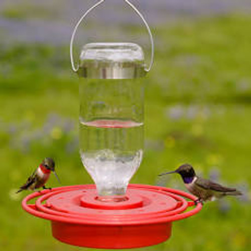 8zo Hummingbird Feeder
