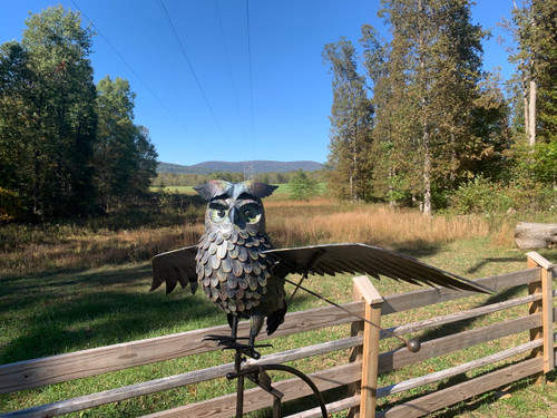Large Metal Owl Rocker