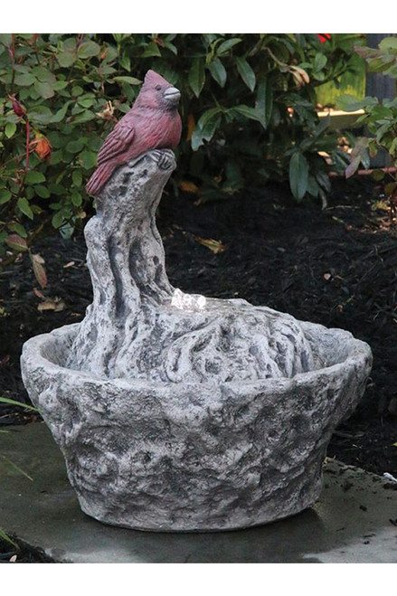 Fountainette Parva Cardinal