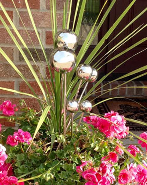 Garden Lollopop Large