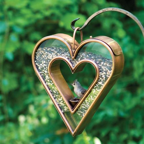 Heart Fly Through Bird Feeder