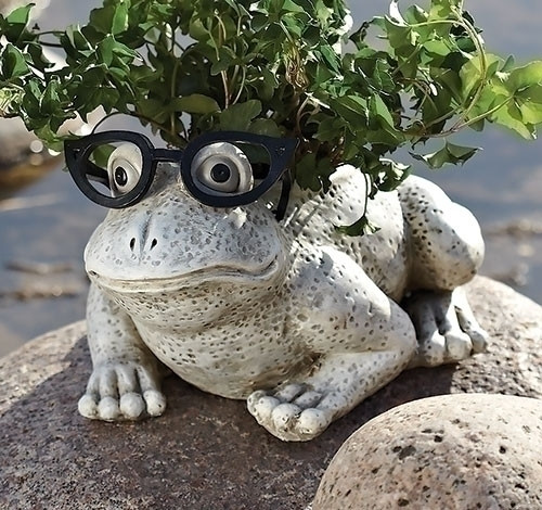 Silly Spectacles Frog Planter