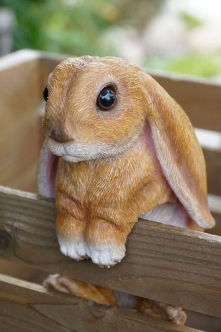 Long Eared Bunny Statue