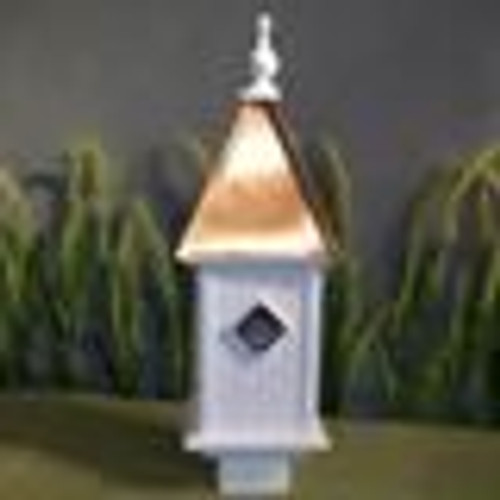 "8"" Bluebird - Bright Copper Roof"
