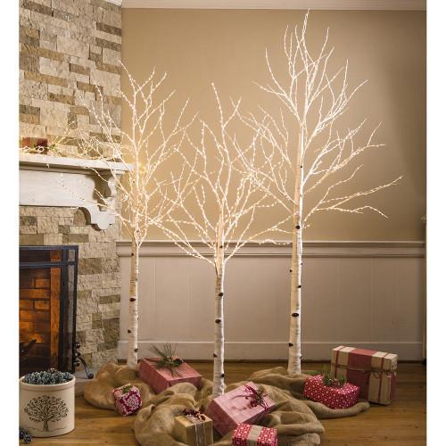 Pre Lite Birch Tree