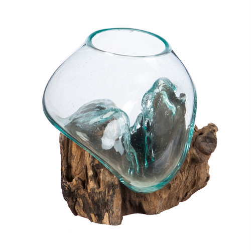 Small Glass Planter On Driftwood