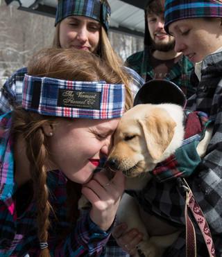 Flannel Dog Jacket - Patchwork U.S.A.