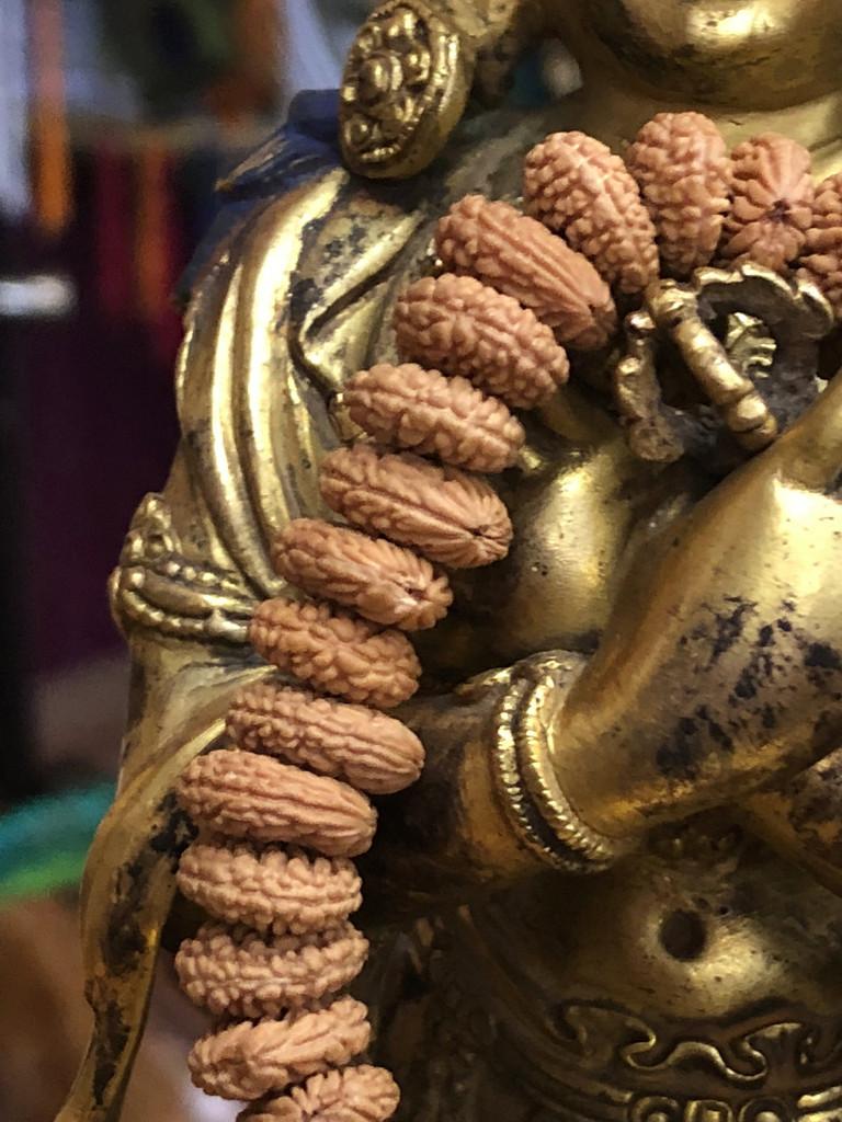 Toad Bodhi Hand Mala-B