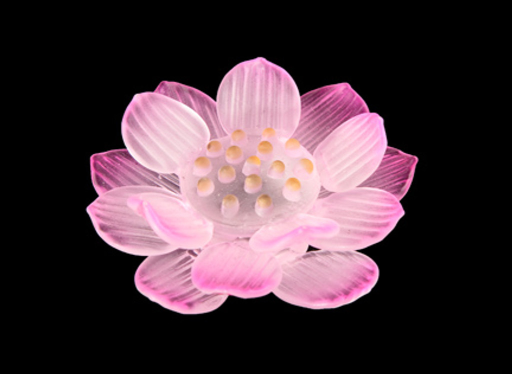 Color glass lotus