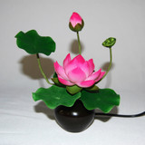 Lotus LED Lamp
