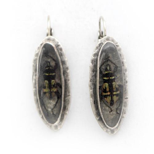 Oval Beetle Earrings