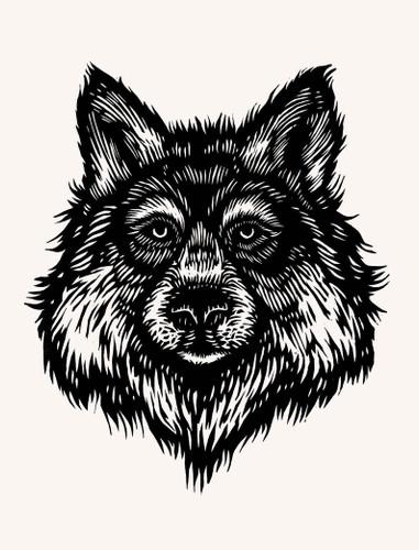 Grey Wolf 16x12