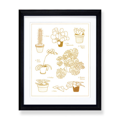Plant Identification 8x10 Framed Print