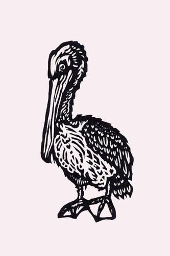 """Pelican 6x9"""""""