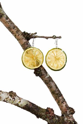 Lime Slice On Hooks - Surgical Steel