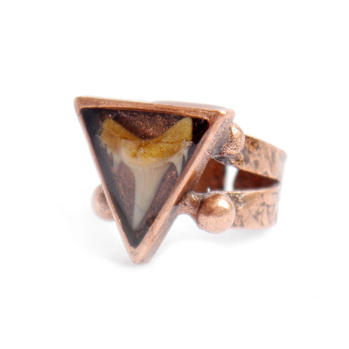 Adjustable Shark Tooth Fossil Ring