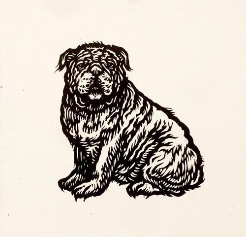"Bulldog linocut 8x8"""