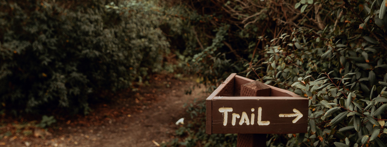 Trail sign in the woods
