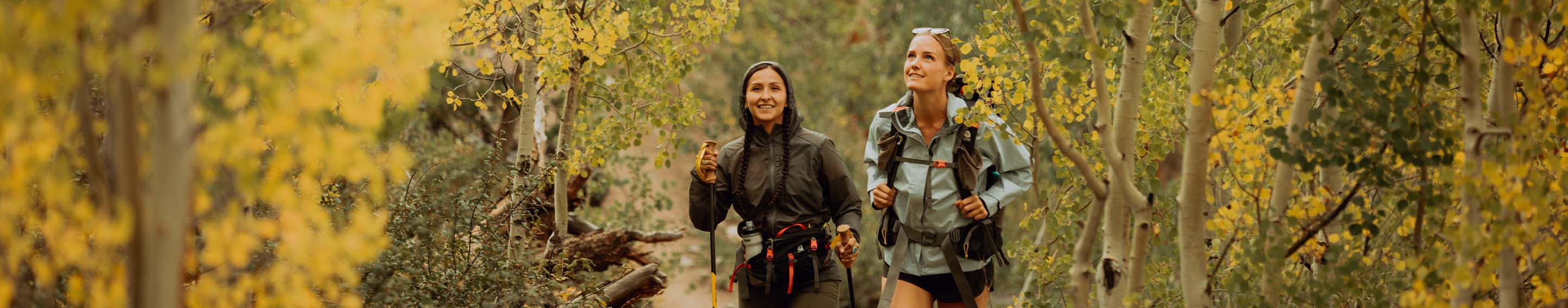Women hiking in a forest