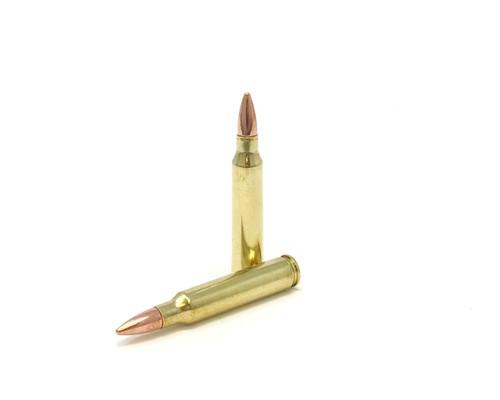 .223 Remington 55gr Full Metal Jacket