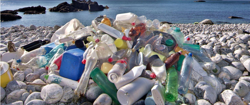 Plastic isn't the Problem, We Are.