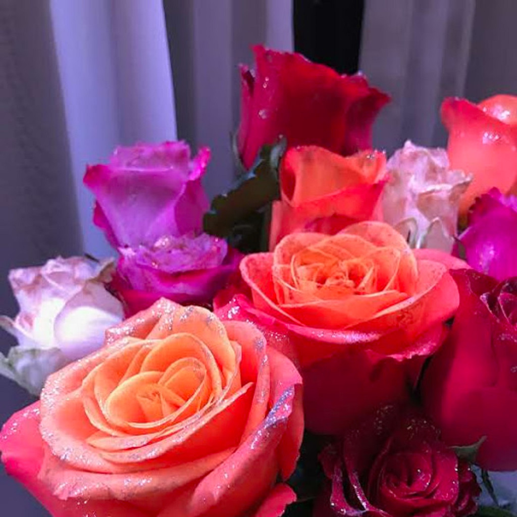 618 RBLV Rose Extravaganza, 12 long stemmed Roses - Sydney Delivery Only INC.