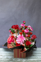 88820 SFT Cabbage Rose & Dahlia Chocolate Bouquet delivered