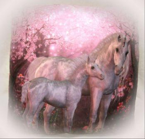 518 UN1 Unicorn pillow - only 1 available
