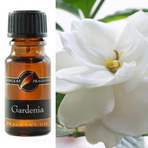 Gardenia Fragrance Oil 12ml