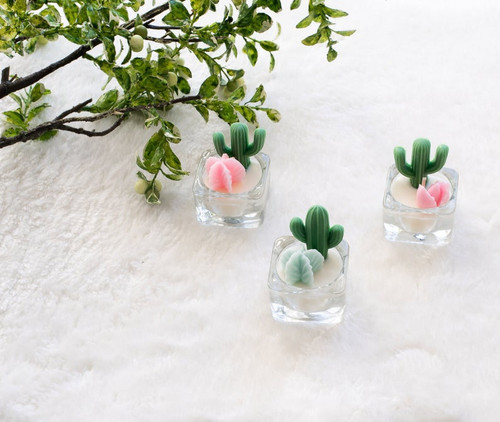 Cactus/Succulent Tea Light Candle