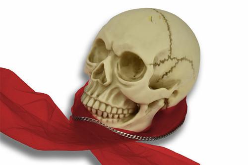 Vinsani Life Size Replica Realistic Human Skull Gothic Halloween Decoration Ornament