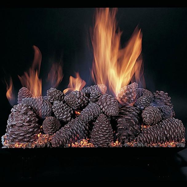 "Pine Cones (PC) By Rasmussen-2"""