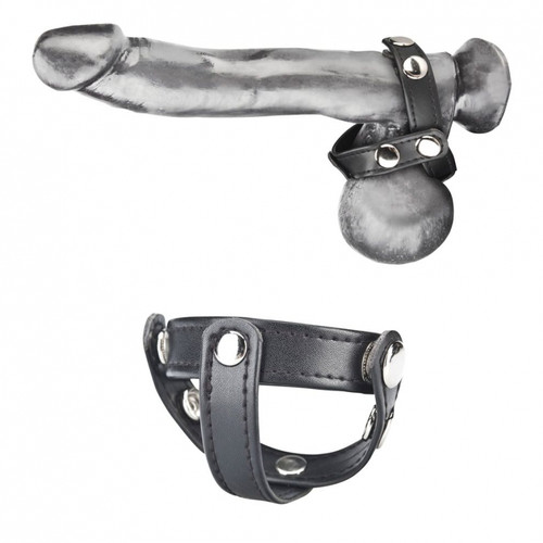 Blueline T-Style Cock Ring with Ball Divider (BLM1693)